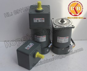 Motor 120W 90YS120GY22-90YB120GY22-90YS120GY38-90YB120GY38