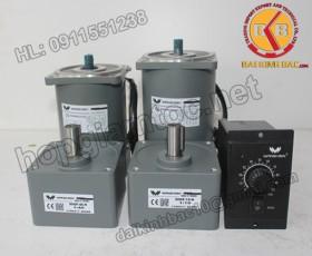 Motor 140W 100YS140GV22-100YT140GV22-100YB140GV22-100YF140GV22