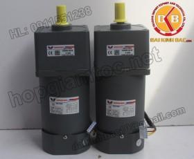 Motor 140W 100YS140GY22-100YB140GY22-100YS140GY38-100YB140GY38