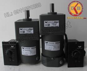 Motor 200W 100YS200GV22-100YT200GV22-100YB200GV22-100YF200GV22