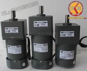 Motor 200W 100YS200GY22-100YB200GY22-100YS200GY38-100YB200GY38