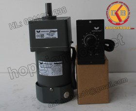 Motor 25W 80YS25GV22-80YR25GV22-80YT25GV22-80YB25GV22