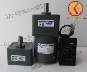 Motor 40W 90YS40GV22-90YR40GV22-90YT40GV22-90YF40GV22-90YB40GV22