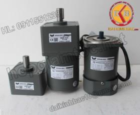 Motor 40W 90YS40GY22-90YB40GY22-90YS40GY38-90YB40GY38