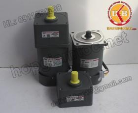 Motor 60W 90YS60GY22-90YB60GY22-90YS60GY38-90YB60GY38
