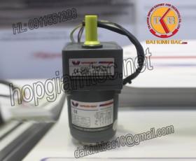 Motor 6W 60YT06GV22- 60YS06GV22- 60YR06GV22-60YB06GV22
