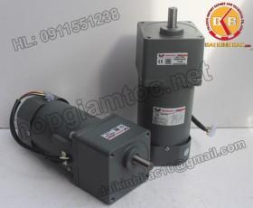 Motor 90W 90YS90GY22-90YB90GY22-90YS90GY38-90YB90GY38