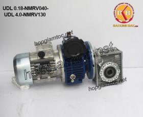 Motor chỉnh tốc gắn hộp số nmrv