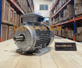 Motor điện 0.55kw 3/4hp