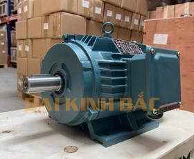 Motor điện 4kw 5.5hp