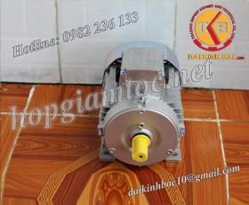 Motor điện Bonfiglioli chân đế 0.09kw