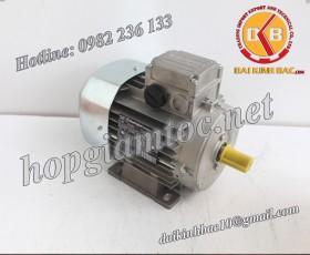 Motor điện Bonfiglioli chân đế 0.18kw