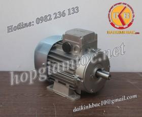 Motor điện Bonfiglioli chân đế 0.25kw