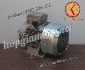 Motor điện Bonfiglioli chân đế 0.75kw