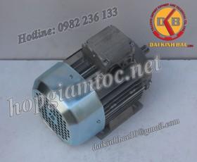 Motor điện Bonfiglioli chân đế 1.1kw