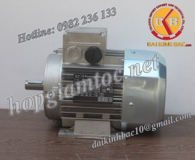 Motor điện Bonfiglioli chân đế 1.85kw