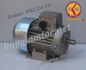 Motor điện Bonfiglioli chân đế 2.2kw