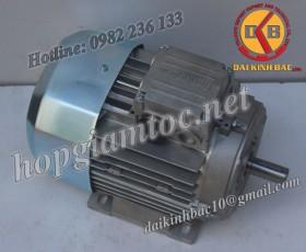 Motor điện Bonfiglioli chân đế 3kw