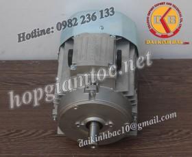 Motor điện Bonfiglioli chân đế 5.5kw