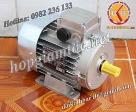 Motor điện Bonfiglioli chân đế 11kw 15Hp