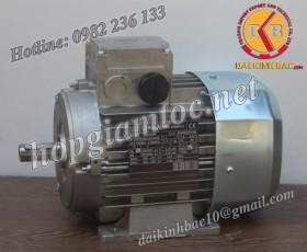Motor điện Bonfiglioli chân đế 22kw 30Hp