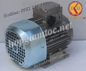 Motor điện Bonfiglioli chân đế 30kw 40Hp