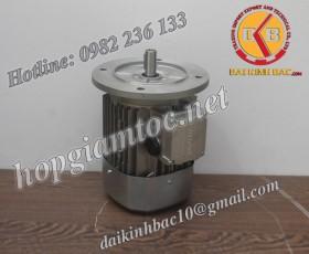 Motor điện Bonfiglioli mặt bích 0.75kw