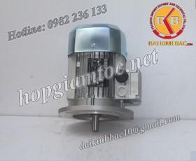 Motor điện Bonfiglioli mặt bích 1.5kw