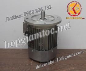 Motor điện Bonfiglioli mặt bích 18.5kw 25Hp