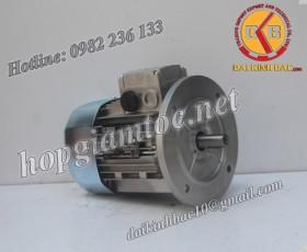Motor điện Bonfiglioli mặt bích 5.5kw