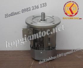 Motor điện Bonfiglioli mặt bích 7.5kw