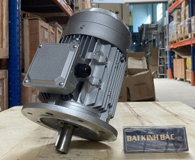 Motor điện MS-100L-4 2.2kw 4P