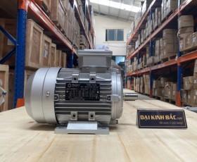Motor điện MS-802-4 0.75kw 4P