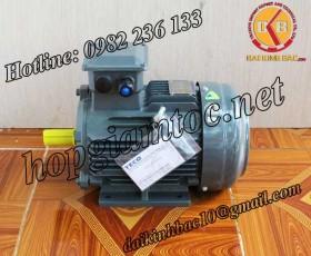 Motor điện Teco chân đế 11kw 15Hp