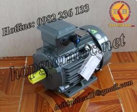 Motor điện Teco chân đế 15kw 20Hp