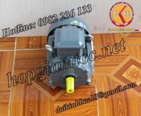 Motor điện Teco chân đế 1.5kw