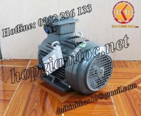 Motor điện Teco chân đế 18.5kw 25Hp