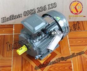 Motor điện Teco chân đế 22kw 30Hp