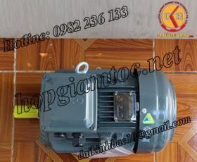 Motor điện Teco chân đế 30kw 40Hp