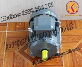 Motor điện Teco chân đế 37kw 50Hp