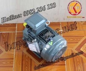 Motor điện Teco chân đế 3.7kw