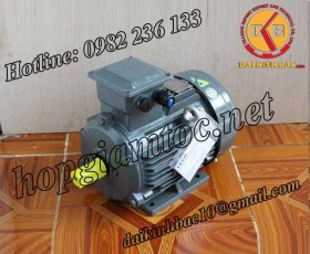Motor điện Teco chân đế 3kw