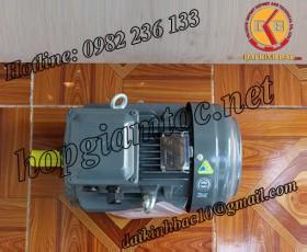 Motor điện Teco chân đế 4kw