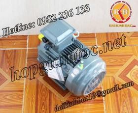 Motor điện Teco chân đế 5.5kw