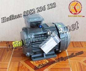 Motor điện Teco chân đế 7.5kw