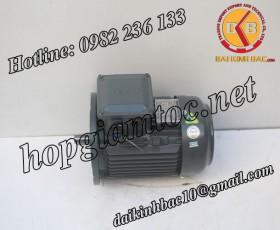 Motor điện Teco mặt bích 0.75kw