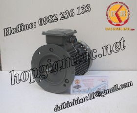 Motor điện Teco mặt bích 1.5kw
