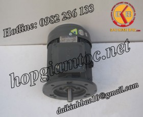 Motor điện Teco mặt bích 2.2kw