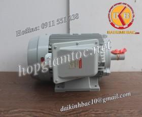 Motor điện Toshiba chân đế 1.5kw