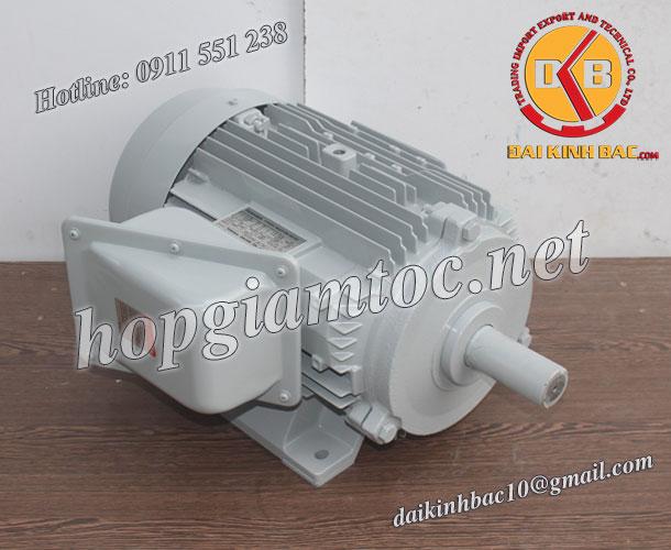 Motor điện Toshiba chân đế 15kw 20hp